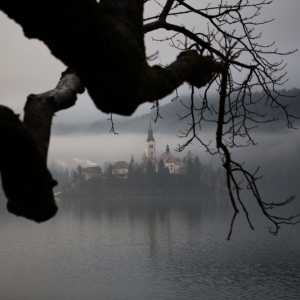 On the Bled island